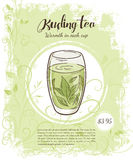 Vector hand drawn illustration of drinks menu pages with cup of kuding tea Royalty Free Stock Photography