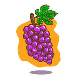 Vector hand drawn illustration of a floating bunch of purple grapes on orange background. There is a green leaf and a brown stalk royalty free illustration