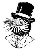 Vector hand drawn illustration of gentleman with mollusk Nautilus Stock Image