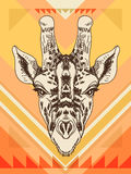 Vector hand drawn illustration with giraffe head Royalty Free Stock Photo