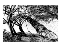 Vector hand drawn illustration of landscape with trees made in realistic style . stock illustration