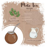 Vector hand drawn illustration of mate tea recipe with list of ingredients Royalty Free Stock Photos