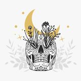 Painted skull with flowers, moon and stars. Vector hand drawn illustration in romantic boho style on white background Stock Images