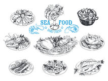 Vector hand drawn illustration with seafood Stock Photography