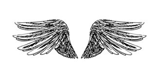 Vector hand drawn illustration of wings on white background. stock illustration