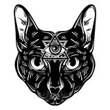Vector hand drawn ilustration of cat. Stock Images