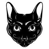 Vector hand drawn ilustration of cat. Royalty Free Stock Photos