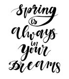 Vector hand drawn lettering phrase on the background. Spring is always in your dreams. Vector hand drawn lettering phrase on the background. Spring is always in stock illustration