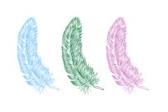 Vector hand drawn line art style feather for poster, banner, logo, icon. Set of colorful fluffy feathers on transparent background. In realistic style stock illustration