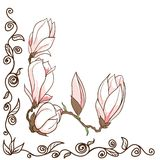 Vector hand drawn magnolia flowers corner frame Royalty Free Stock Photo
