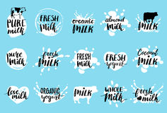 Vector hand drawn milk labels. Signs set for dairy produce. Tags collection for products packaging, advertising etc. Vector hand drawn milk logotypes or labels Royalty Free Stock Photography