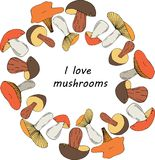 Vector hand drawn mushrooms in circle form with place for text in center illustration royalty free illustration
