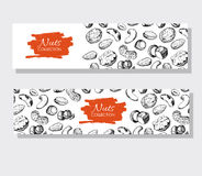 Vector hand drawn nuts banners. Engraved detailed illustrations. Stock Images