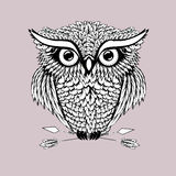Vector hand drawn Owl sitting on branch. stock illustration