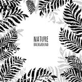 Vector hand drawn palm tree leaves, grunge background. Stock Photos