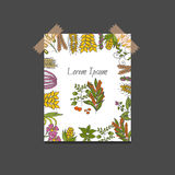 Vector hand drawn porridge cereals background Stock Photo