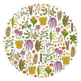 Vector hand drawn porridge cereals background Royalty Free Stock Images
