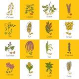 Vector hand drawn porridge cereals icons Stock Photo