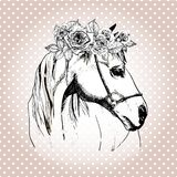 Vector hand drawn portrait of horse wearing the floral crown.  on polka dot background. Stock Photos