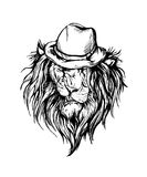 Vector hand drawn realistic lion Royalty Free Stock Photos