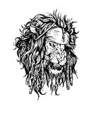Vector hand drawn realistic lion-pirate Royalty Free Stock Photo