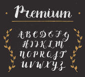 Vector Hand Drawn Script Alphabet. Letters Written with a Brush Pen with Ink Royalty Free Stock Images