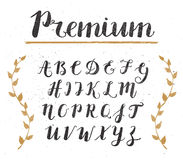 Vector Hand Drawn Script Alphabet. Letters Written with a Brush Stock Photography