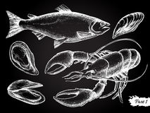 Vector hand drawn seafood chalkboard set. Royalty Free Stock Photography