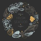 Vector hand drawn seafood logo. Lobster, salmon, crab, shrimp, squid, clams. Stock Image