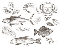 Vector hand drawn seafood set Royalty Free Stock Photography