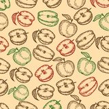 Seamless pattern of apples in the engraving vintage  style . Vector hand drawn seamless pattern of apples and half of apples in the engraving vintage style vector illustration
