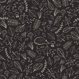 Vector hand drawn seamless pattern with autumn elements contours Stock Photography