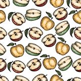Seamless pattern of colorful of apples in the engraving style isolated on white. Vector hand drawn seamless pattern of colorful  apples and half of apples in stock illustration