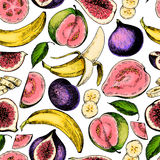 Vector hand drawn seamless pattern of isolated fig, guava, banana. Engraved colored art. Delicious tropical vegetarian fruits. Restaurant, meal, market, store Royalty Free Stock Image