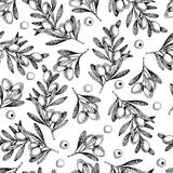 Vector hand drawn seamless pattern of olive branches. Natural cosmetic products. Hair care oils. Farm vegetables Stock Photography