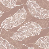 Vector hand drawn seamless patterns with feathers Royalty Free Stock Photos