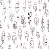 Vector Hand Drawn Seamless Patterns with Feathers Stock Photo