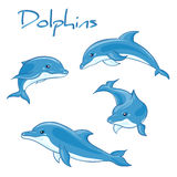 Vector hand drawn set of cartoon dolphins. In different poses Stock Photography
