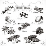 Vector hand drawn set with Dessert Spices Royalty Free Stock Photo
