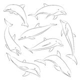 Vector hand drawn set of dolphins Stock Photos