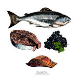 Vector hand drawn set of seafood icons. salmon fillet, slice and caviar. Engraved colored art. Delicious food sketched objects. For resaurant, meal, market Royalty Free Stock Photo