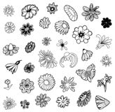 Vector Hand drawn sketch of flower symbols illustration on white background stock illustration