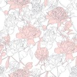 Vector hand drawn sketch illustration of pink, white peony flowers and leaves seamless pattern. Floral white background, backdrop element for fabric, textile vector illustration