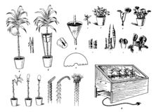 Vector Hand drawn sketch of plants care process illustration on white background royalty free illustration