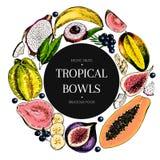 Vector hand drawn smoothie bowls poster. engraved fruits. Colored icons in round bodrer. Banana, mango, papaya, pitaya. Fig, carambola, pitahaya, lychee Stock Photos