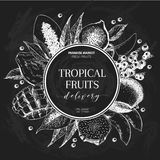 Vector hand drawn smoothie bowls poster. Exotic chalkboard style engraved fruits. Round border composition. Banana. Mango, papaya, pitaya, acai, lychee, fig Stock Image