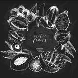 Vector hand drawn smoothie bowls poster. Exotic chalkboard style engraved fruits. Square border composition. Banana Royalty Free Stock Photos