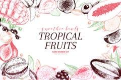Vector hand drawn smoothie bowls poster. Exotic engraved fruits. Colored art. Frame border composition. Banana, mango. Papaya, pitaya, acai, lychee, fig. for Royalty Free Stock Images