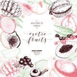 Vector hand drawn smoothie bowls poster. Exotic engraved fruits. Colored art. Frame border composition. Banana, mango. Papaya, pitaya, acai, lychee, fig. for Stock Photos