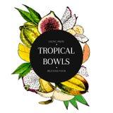 Vector hand drawn smoothie bowls poster. Exotic engraved fruits. Colored icons in round bodrer composition. Banana. Mango, papaya, pitaya, fig, carambola Stock Image